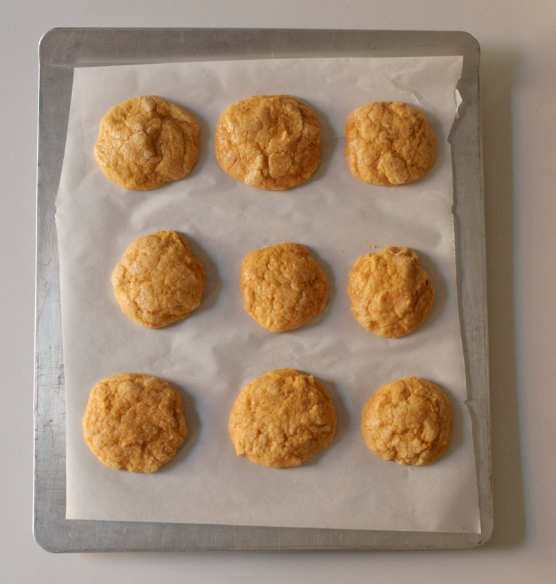 rubber-scraper-mvt_pumpkin-spice-sugar-cookies_carmen-ladipo_0049