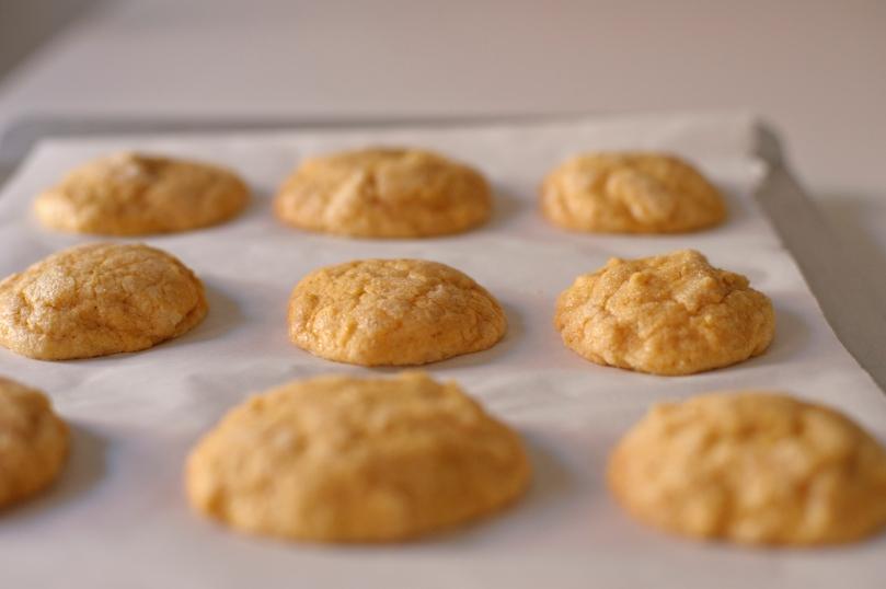 rubber-scraper-mvt_pumpkin-spice-sugar-cookies_carmen-ladipo_0069